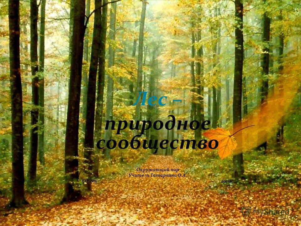 Лес – природное сообщество Окружающий мир Учитель Татаркина О.А. ОУ 3 2010г