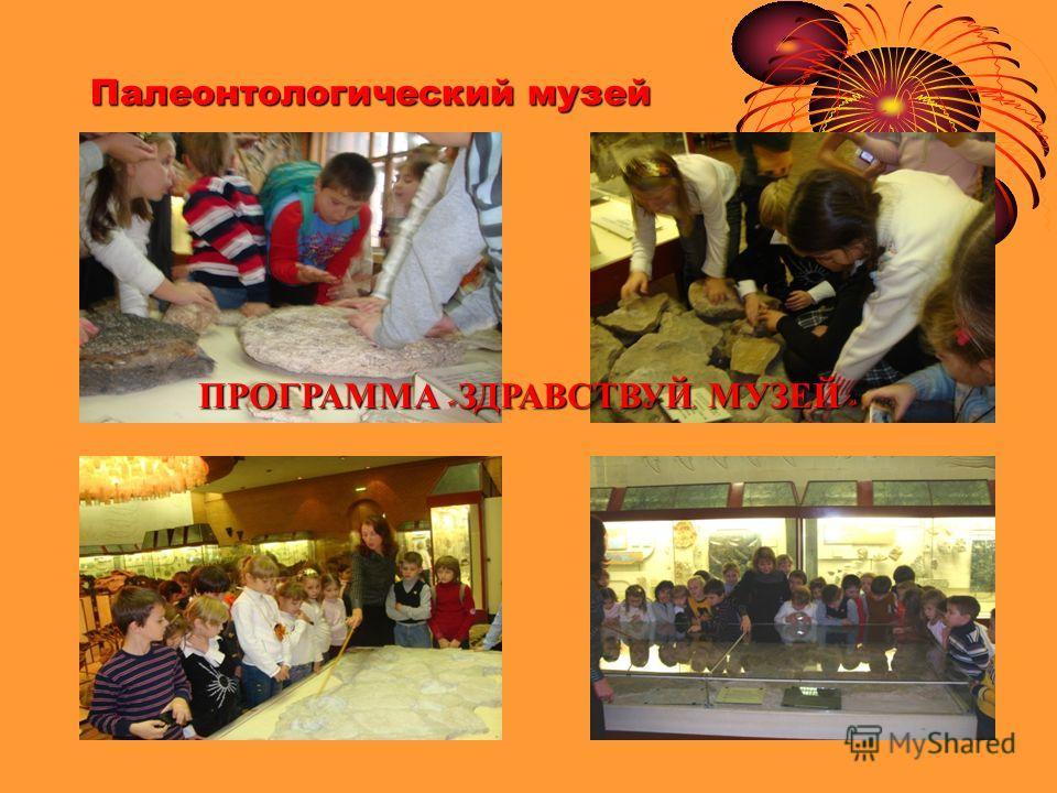 Палеонтологический музей ПРОГРАММА « ЗДРАВСТВУЙ, МУЗЕЙ !»