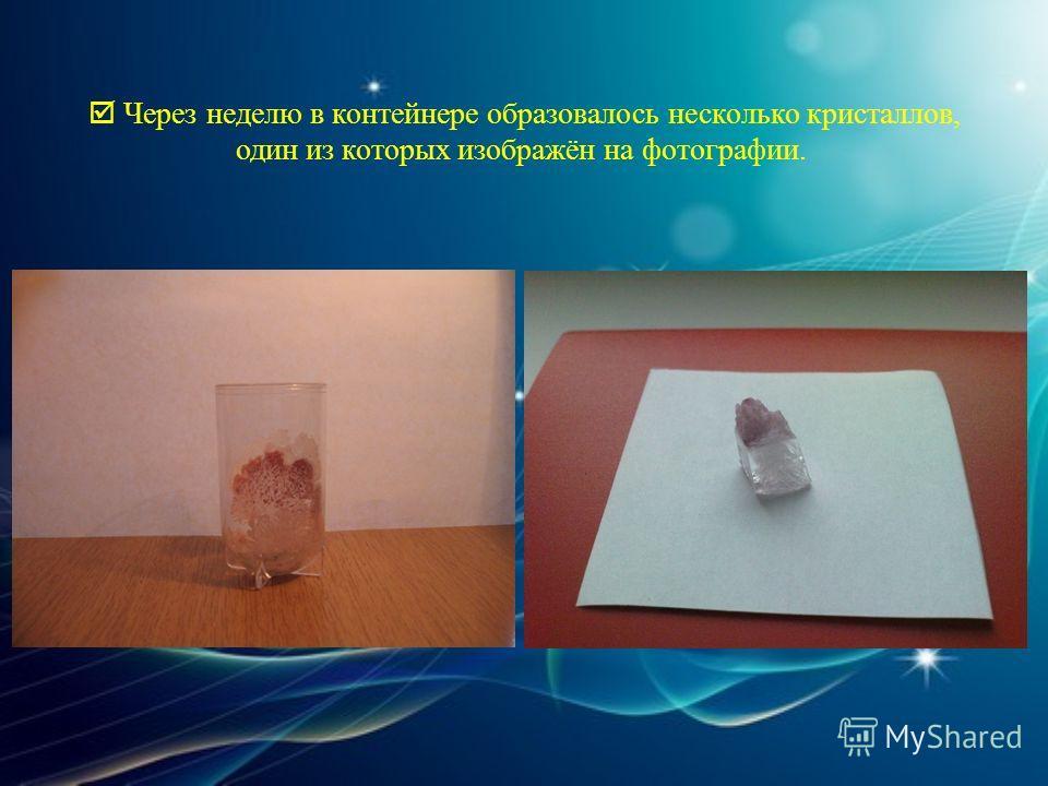 Через неделю в контейнере образовалось несколько кристаллов, один из которых изображён на фотографии.