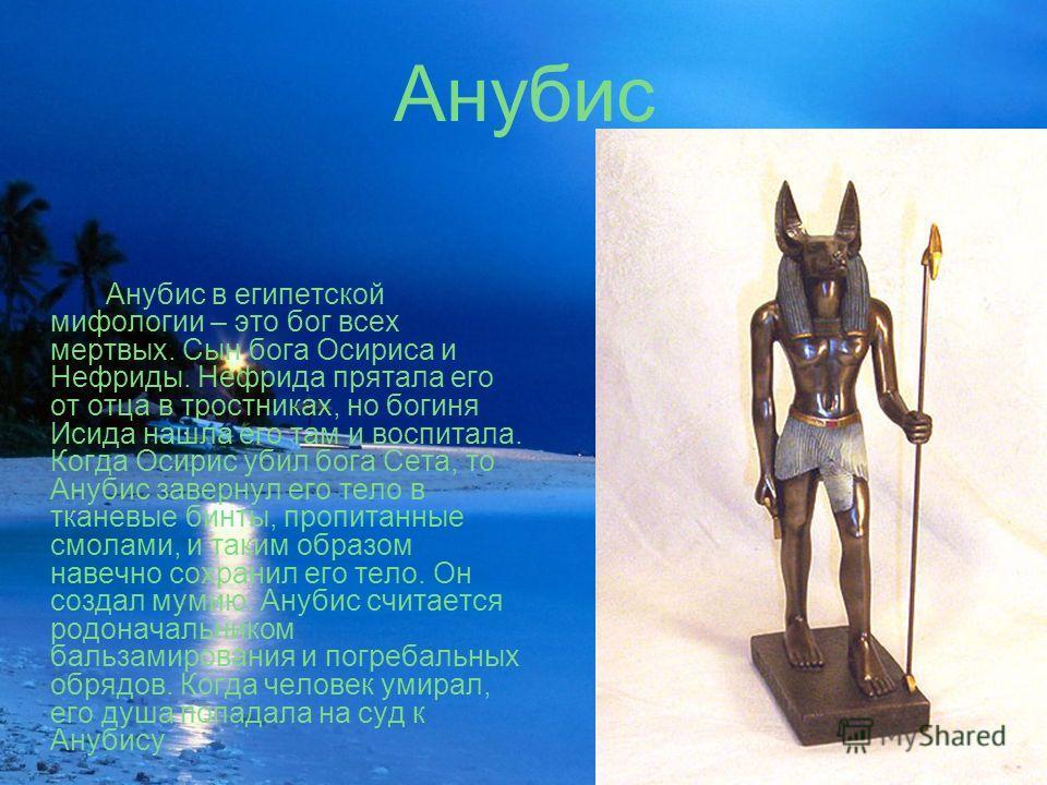 Анубис Анубис в египетской мифологии – это бог всех мертвых. Сын бога Осириса и Нефриды. Нефрида прятала его от отца в тростниках, но богиня Исида нашла его там и воспитала. Когда Осирис убил бога Сета, то Анубис завернул его тело в тканевые бинты, п