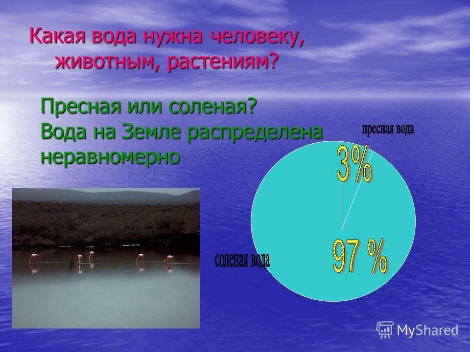 Какая вода нужна человеку, животным, растениям? животным, растениям? Пресная или соленая? Вода на Земле распределена неравномерно