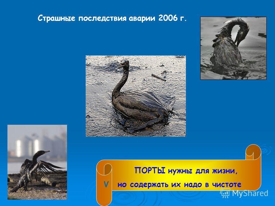 Страшные последствия аварии 2006 г. ПОРТЫ нужны для жизни, но содержать их надо в чистоте V