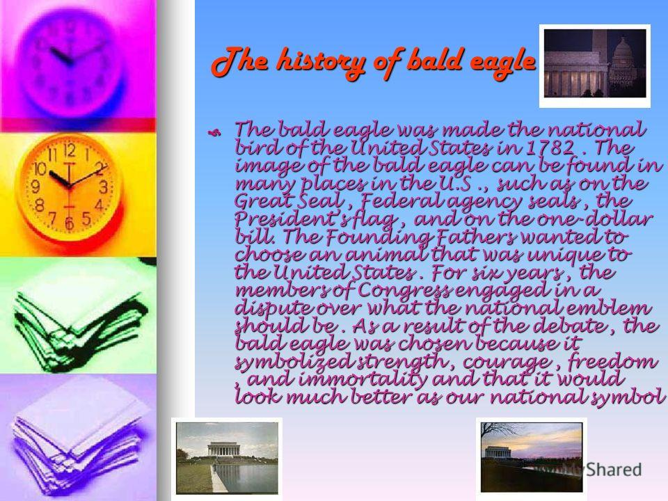 The history of bald eagle The history of bald eagle The bald eagle was made the national bird of the United States in 1782. The image of the bald eagle can be found in many places in the U.S., such as on the Great Seal, Federal agency seals, the Pres
