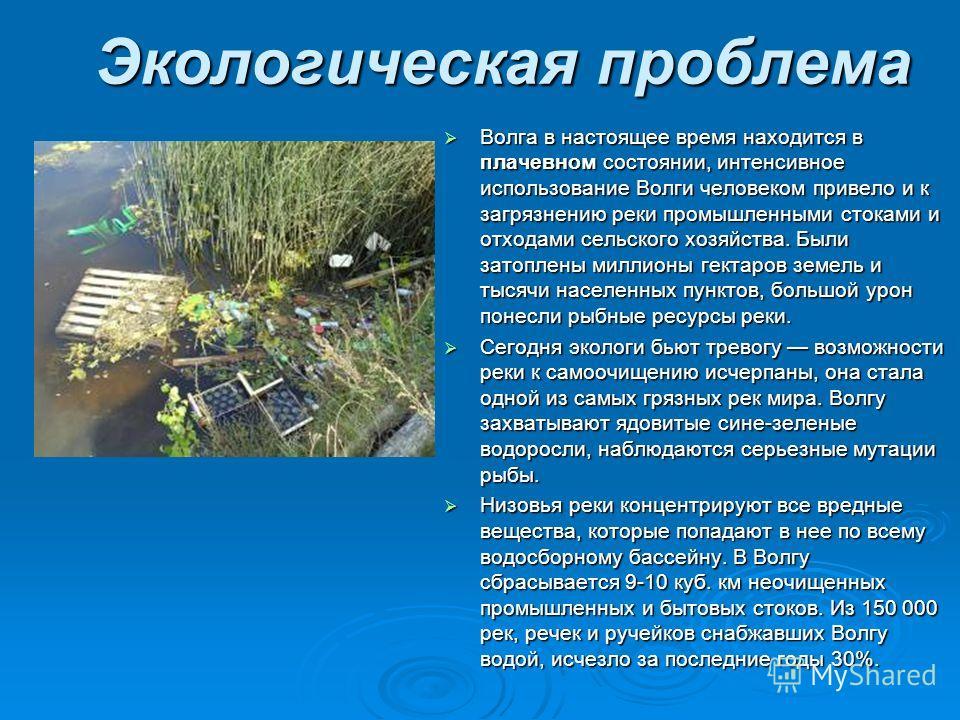 Экологическая проблема Волга в настоящее время находится в плачевном состоянии, интенсивное использование Волги человеком привело и к загрязнению реки промышленными стоками и отходами сельского хозяйства. Были затоплены миллионы гектаров земель и тыс