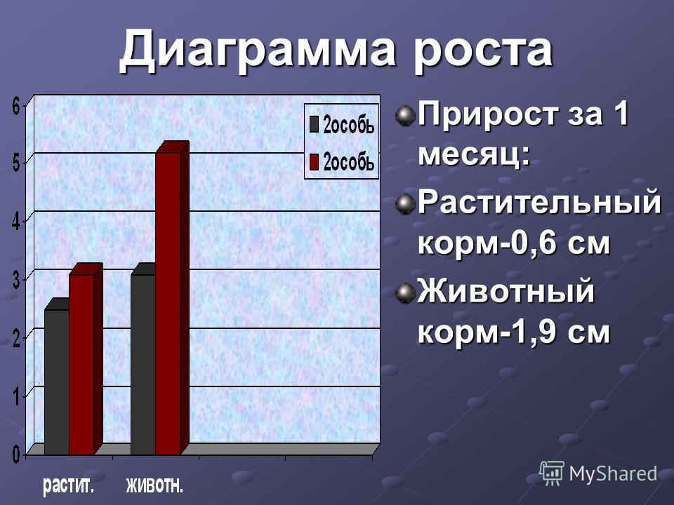 Диаграмма роста Прирост за 1 месяц: Растительный корм-0,6 см Животный корм-1,9 см