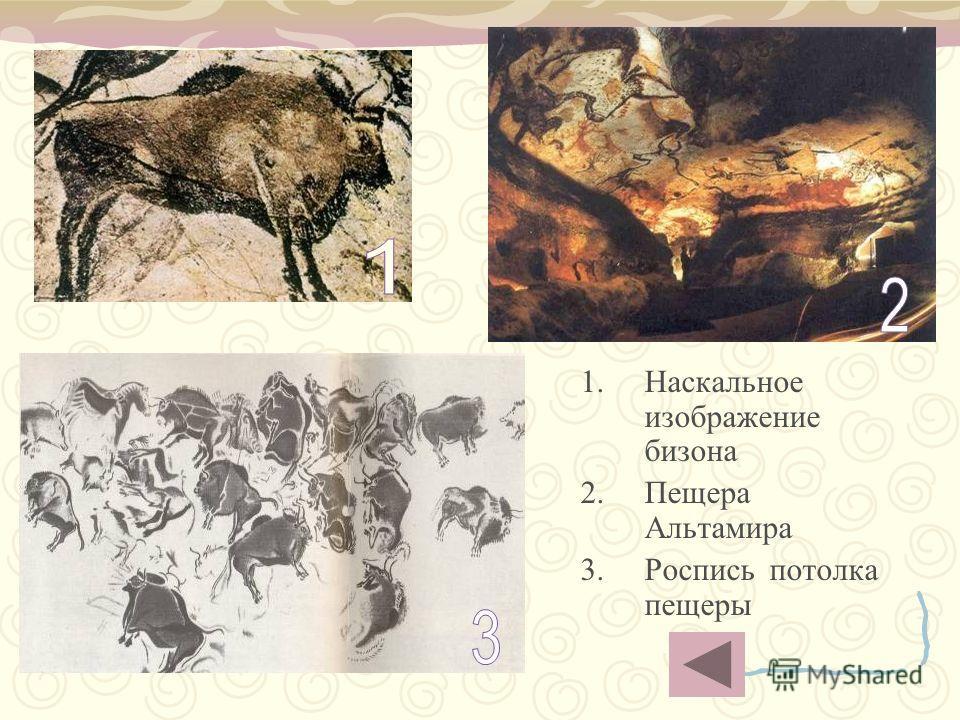 1.Наскальное изображение бизона 2.Пещера Альтамира 3.Роспись потолка пещеры