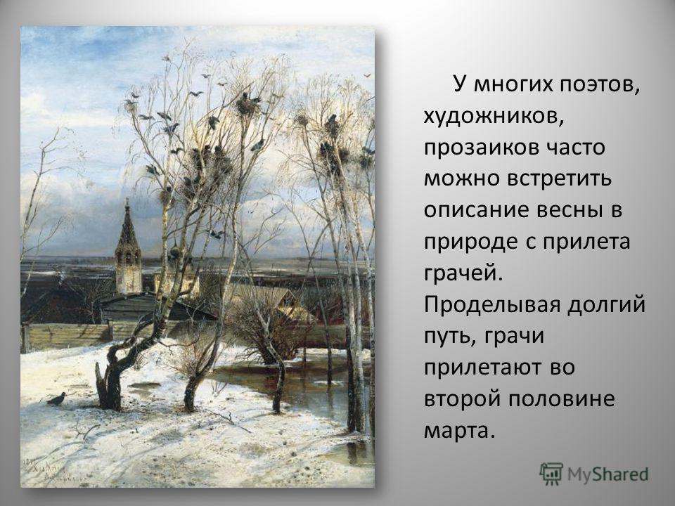 У многих поэтов, художников, прозаиков часто можно встретить описание весны в природе с прилета грачей. Проделывая долгий путь, грачи прилетают во второй половине марта.