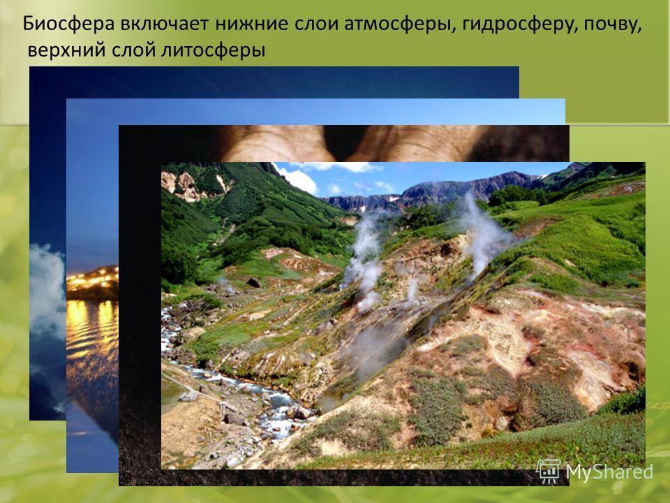 Биосфера включает нижние слои атмосферы, гидросферу, почву, верхний слой литосферы