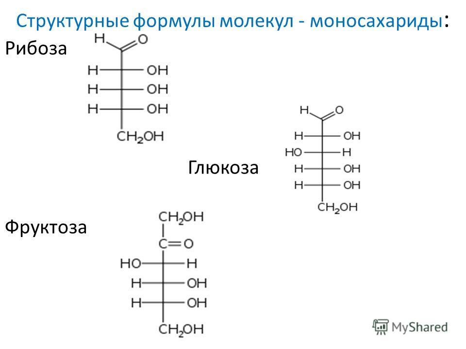 Структурные формулы молекул - моносахариды : Рибоза Глюкоза Фруктоза