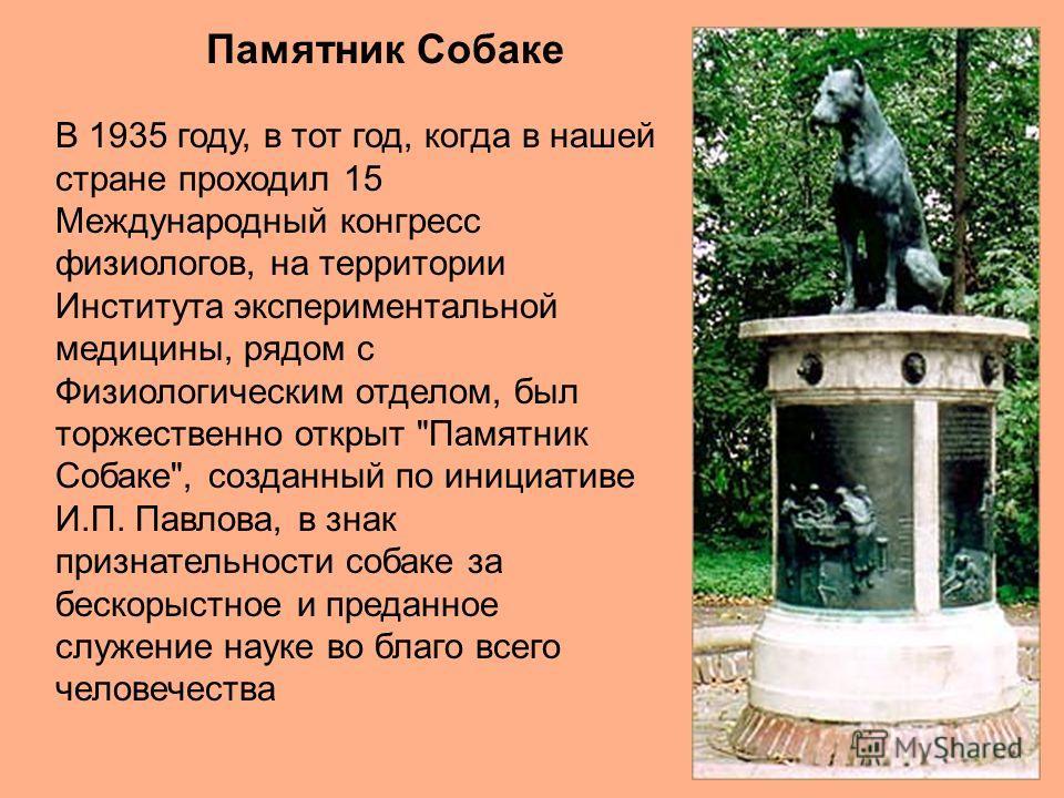 Памятник Собаке В 1935 году, в тот год, когда в нашей стране проходил 15 Международный конгресс физиологов, на территории Института экспериментальной медицины, рядом с Физиологическим отделом, был торжественно открыт