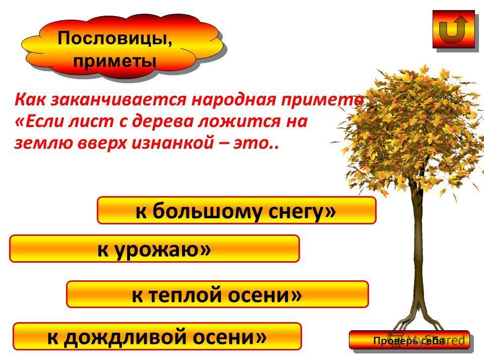 Как заканчивается народная примета «Если лист с дерева ложится на землю вверх изнанкой – это.. Пословицы, приметы к урожаю» к дождливой осени» к теплой осени» к большому снегу» Проверь себя