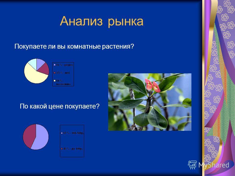 Анализ рынка Покупаете ли вы комнатные растения? По какой цене покупаете?