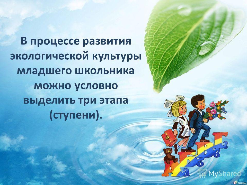 В процессе развития экологической культуры младшего школьника можно условно выделить три этапа (ступени).