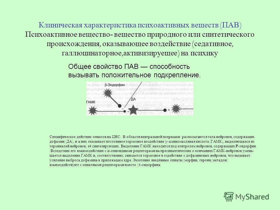 Клиническая характеристика психоактивных веществ ( ПАВ ) Психоактивное вещество - вещество природного или синтетического происхождения, оказывающее воздействие ( седативное, галлюцинаторное, активизируещее ) на психику Общее свойство ПАВ способность