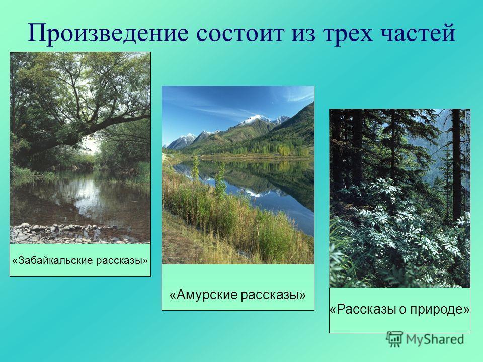 Произведение состоит из трех частей «Забайкальские рассказы» «Амурские рассказы» «Рассказы о природе»
