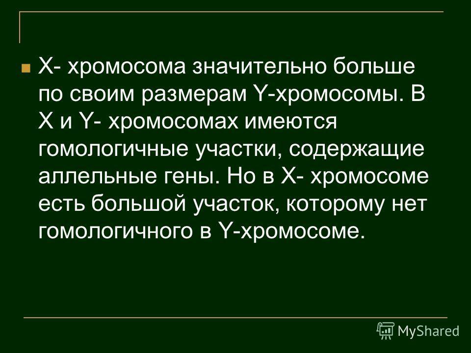 X- хромосома значительно больше по своим размерам Y-хромосомы. В X и Y- хромосомах имеются гомологичные участки, содержащие аллельные гены. Но в X- хромосоме есть большой участок, которому нет гомологичного в Y-хромосоме.