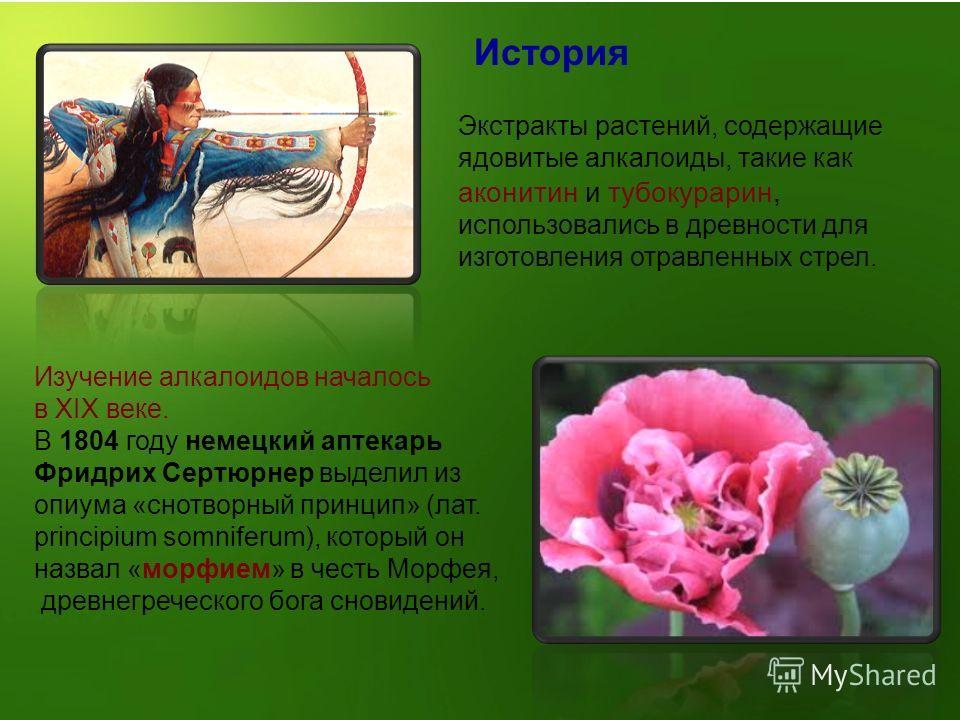 История Изучение алкалоидов началось в XIX веке. В 1804 году немецкий аптекарь Фридрих Сертюрнер выделил из опиума «снотворный принцип» (лат. principium somniferum), который он назвал «морфием» в честь Морфея, древнегреческого бога сновидений. Экстра