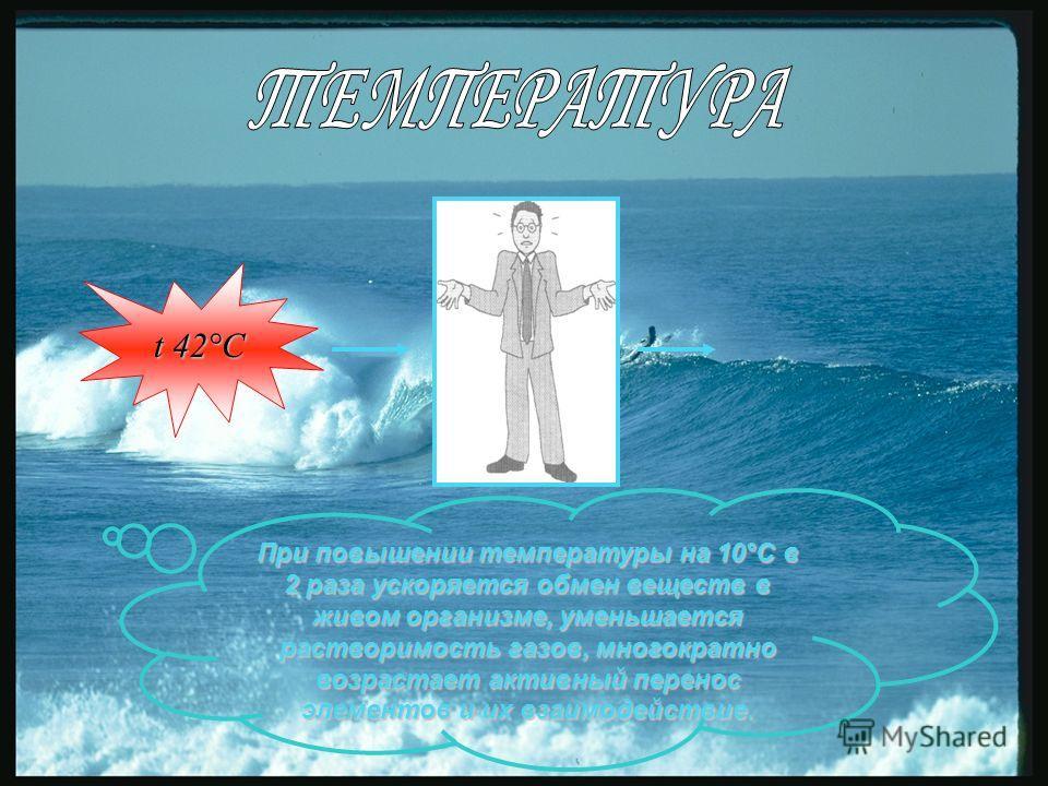 t 42°С При повышении температуры на 10°С в 2 раза ускоряется обмен веществ в живом организме, уменьшается растворимость газов, многократно возрастает активный перенос элементов и их взаимодействие.