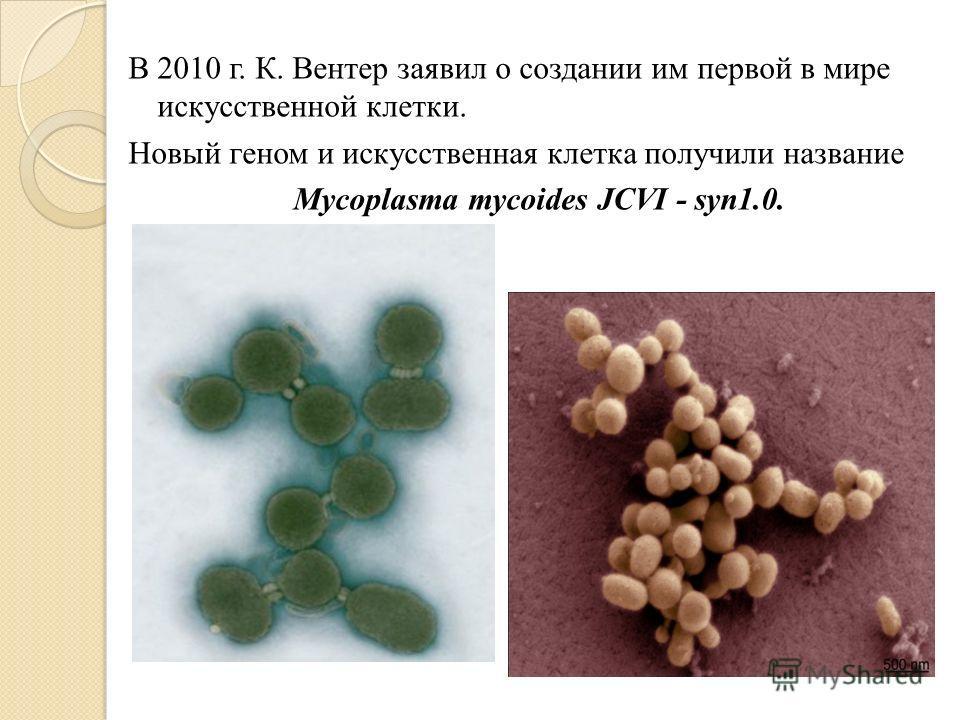В 2010 г. К. Вентер заявил о создании им первой в мире искусственной клетки. Новый геном и искусственная клетка получили название Mycoplasma mycoides JCVI - syn1.0.