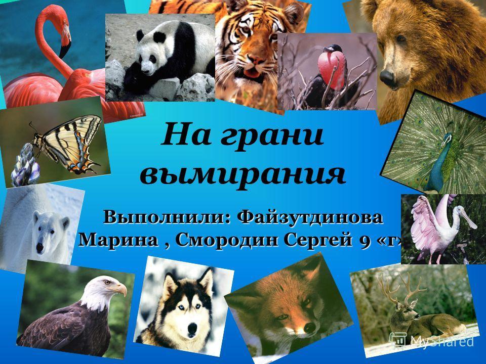На грани вымирания Выполнили: Файзутдинова Марина, Смородин Сергей 9 «г»