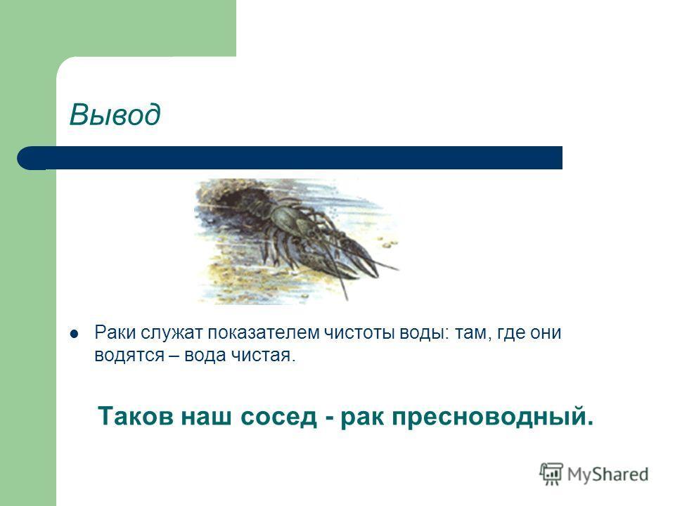 Забавный факт Проверку качества воды на водозаборе Санкт-Петербурга собираются поручить речным ракам. О состоянии их здоровья мгновенно расскажут микроскопические датчики, прикрепленные к их спинам. Забилось рачье сердце значит вода грязная. Надо при