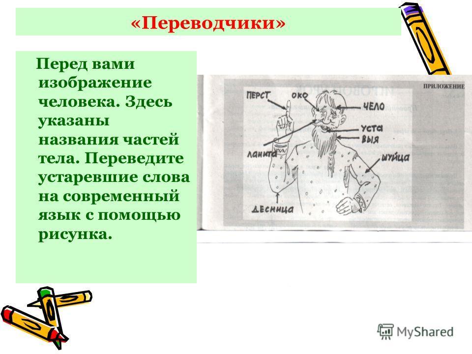 «Переводчики» Перед вами изображение человека. Здесь указаны названия частей тела. Переведите устаревшие слова на современный язык с помощью рисунка.