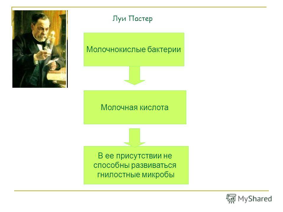 Молочнокислые бактерии Молочная кислота В ее присутствии не способны развиваться гнилостные микробы Луи Пастер