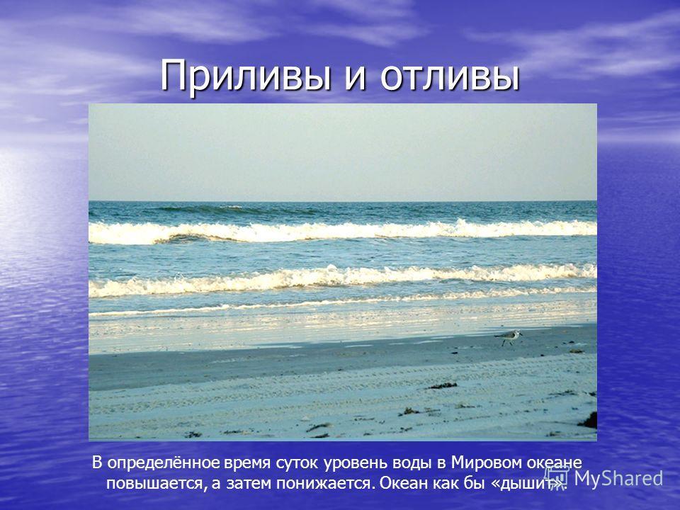 Цунами В переводе с японского означает «волна в бухте». Землетрясение Высота волны у берега до 40 м Длина волны 100-200 км