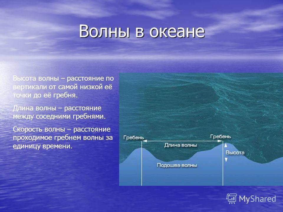 Температура воды изменяется так же в зависимости от широты места Вблизи от экватора поверхностные воды самые тёплые – около +28 0 С В приполярных областях океаническая вода замерзает при температуре -2 0 С
