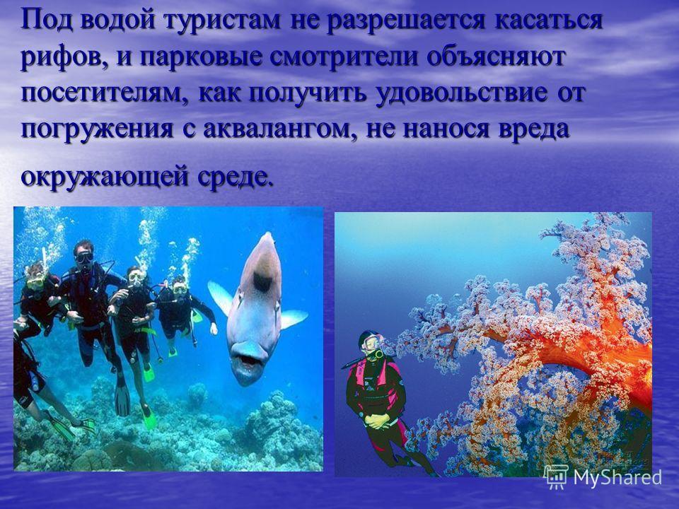 Под водой туристам не разрешается касаться рифов, и парковые смотрители объясняют посетителям, как получить удовольствие от погружения с аквалангом, не нанося вреда окружающей среде.