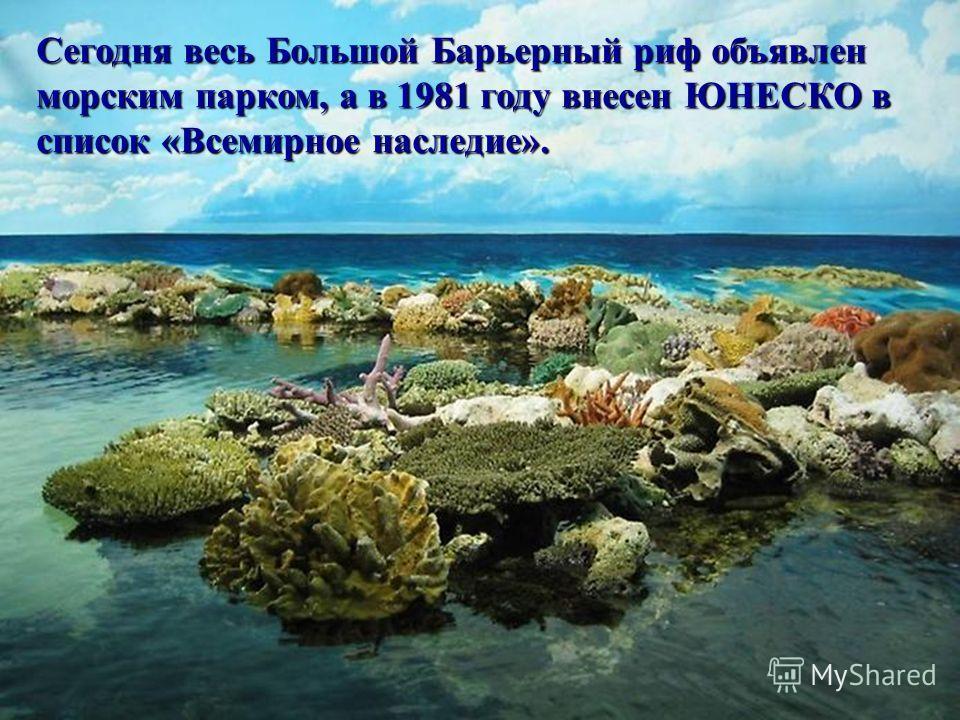 Сегодня весь Большой Барьерный риф объявлен морским парком, а в 1981 году внесен ЮНЕСКО в список «Всемирное наследие». Сегодня весь Большой Барьерный риф объявлен морским парком, а в 1981 году внесен ЮНЕСКО в список «Всемирное наследие». Сегодня весь
