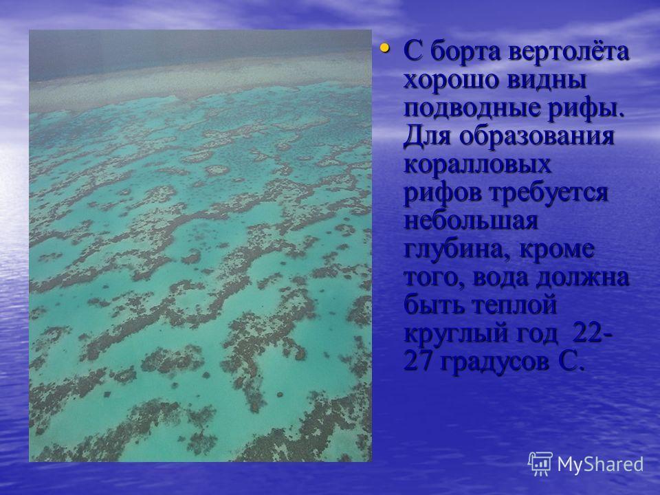 С борта вертолёта хорошо видны подводные рифы. Для образования коралловых рифов требуется небольшая глубина, кроме того, вода должна быть теплой круглый год 22- 27 градусов С. С борта вертолёта хорошо видны подводные рифы. Для образования коралловых