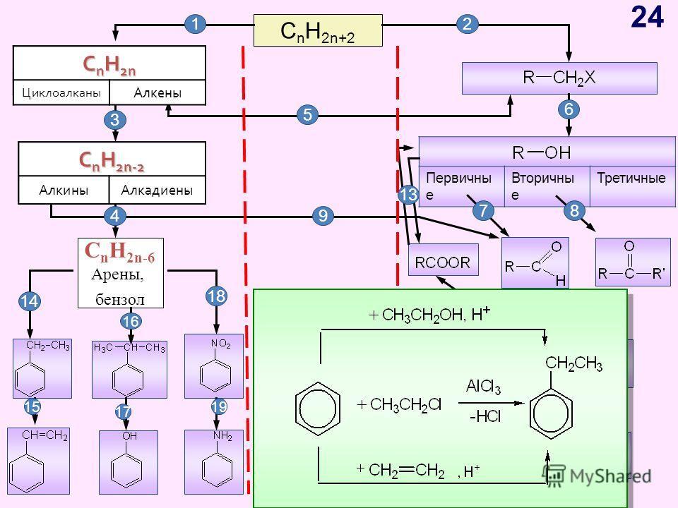 C n H 2n+2 C n H 2n ЦиклоалканыАлкены C n H 2n-2 АлкиныАлкадиены Первичны е Вторичны е Третичные C n H 2n-6 Арены, бензол 12 C n H 2n Циклоалканы Алкены C n H 2n-2 АлкиныАлкадиены 3 4 5 6 78 9 10 11 12 13 14 15 17 19 16 18 24