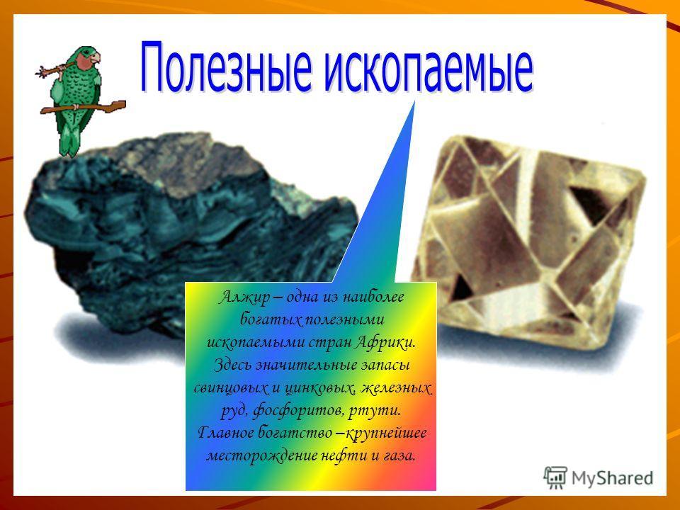 Алжир – одна из наиболее богатых полезными ископаемыми стран Африки. Здесь значительные запасы свинцовых и цинковых, железных руд, фосфоритов, ртути. Главное богатство –крупнейшее месторождение нефти и газа.