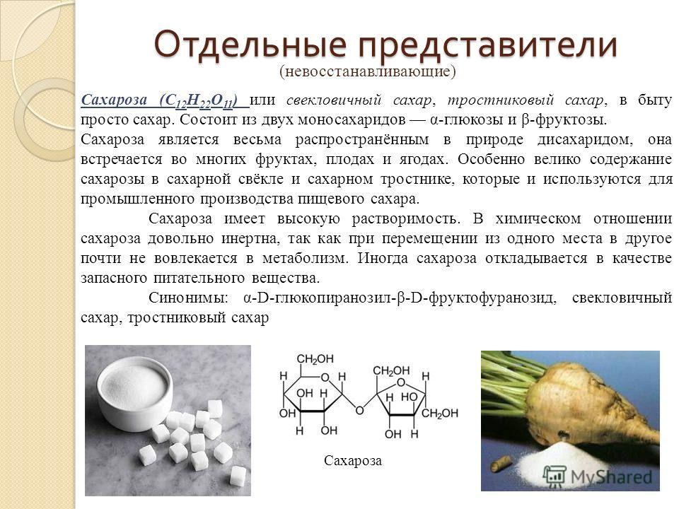Отдельные представители (невосстанавливающие) Сахароза (C 12 H 22 O 11 ) или свекловичный сахар, тростниковый сахар, в быту просто сахар. Состоит из двух моносахаридов α-глюкозы и β-фруктозы. Сахароза является весьма распространённым в природе дисаха