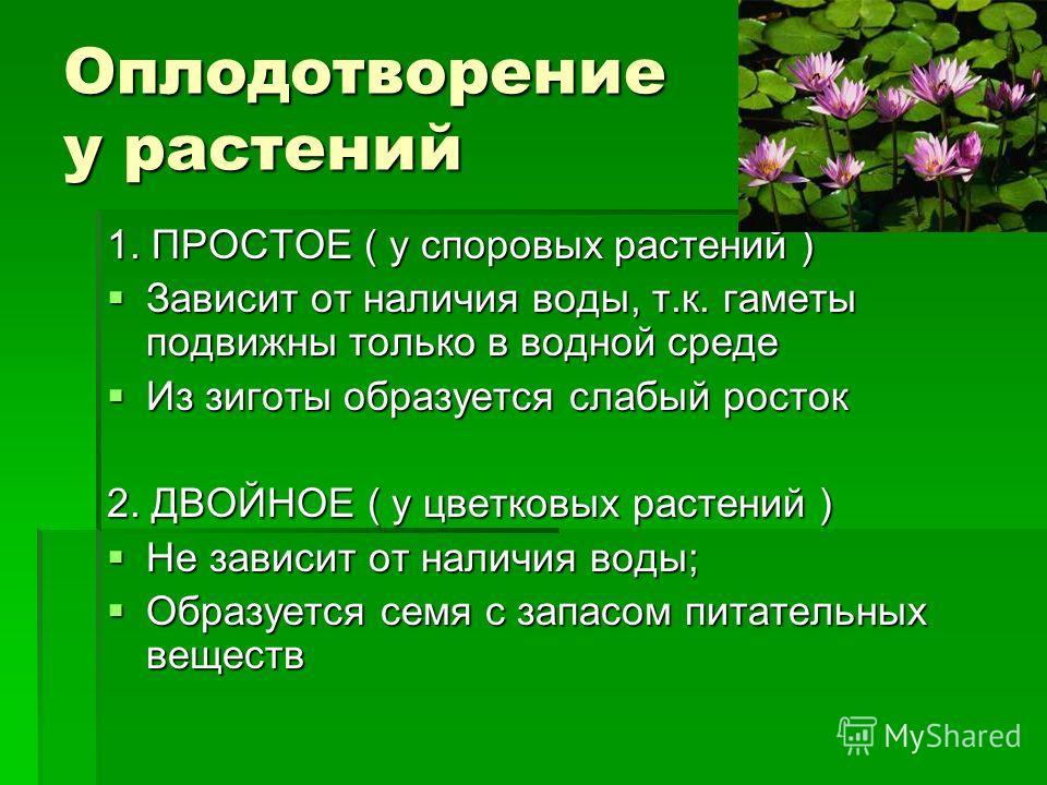 Оплодотворение у растений 1. ПРОСТОЕ ( у споровых растений ) Зависит от наличия воды, т.к. гаметы подвижны только в водной среде Зависит от наличия воды, т.к. гаметы подвижны только в водной среде Из зиготы образуется слабый росток Из зиготы образует