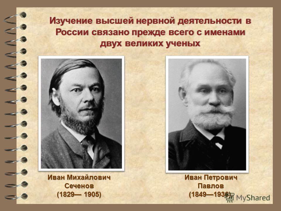 Изучение высшей нервной деятельности в России связано прежде всего с именами двух великих ученыхдвух великих ученых Иван Петрович Павлов (18491936). Иван Михайлович Сеченов (1829 1905)