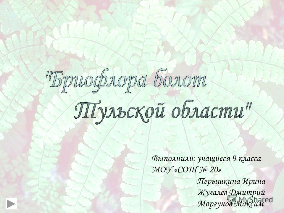Выполнили: учащиеся 9 класса МОУ «СОШ 20» Перышкина Ирина Жугалев Дмитрий Моргунов Максим