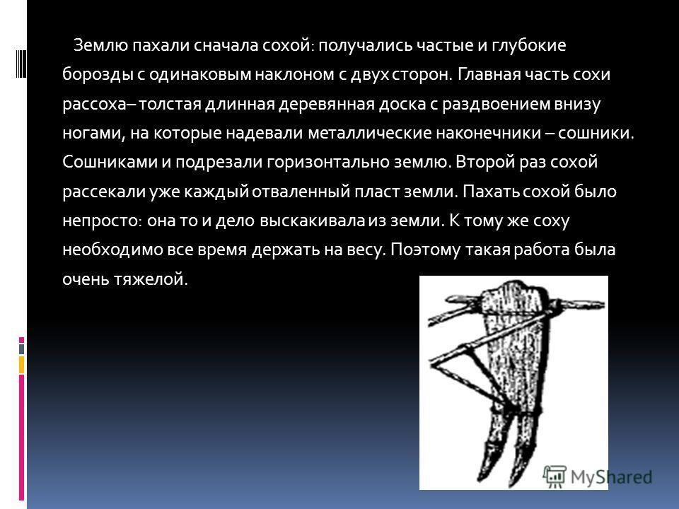 Землю пахали сначала сохой: получались частые и глубокие борозды с одинаковым наклоном с двух сторон. Главная часть сохи рассоха– толстая длинная деревянная доска с раздвоением внизу ногами, на которые надевали металлические наконечники – сошники. Со
