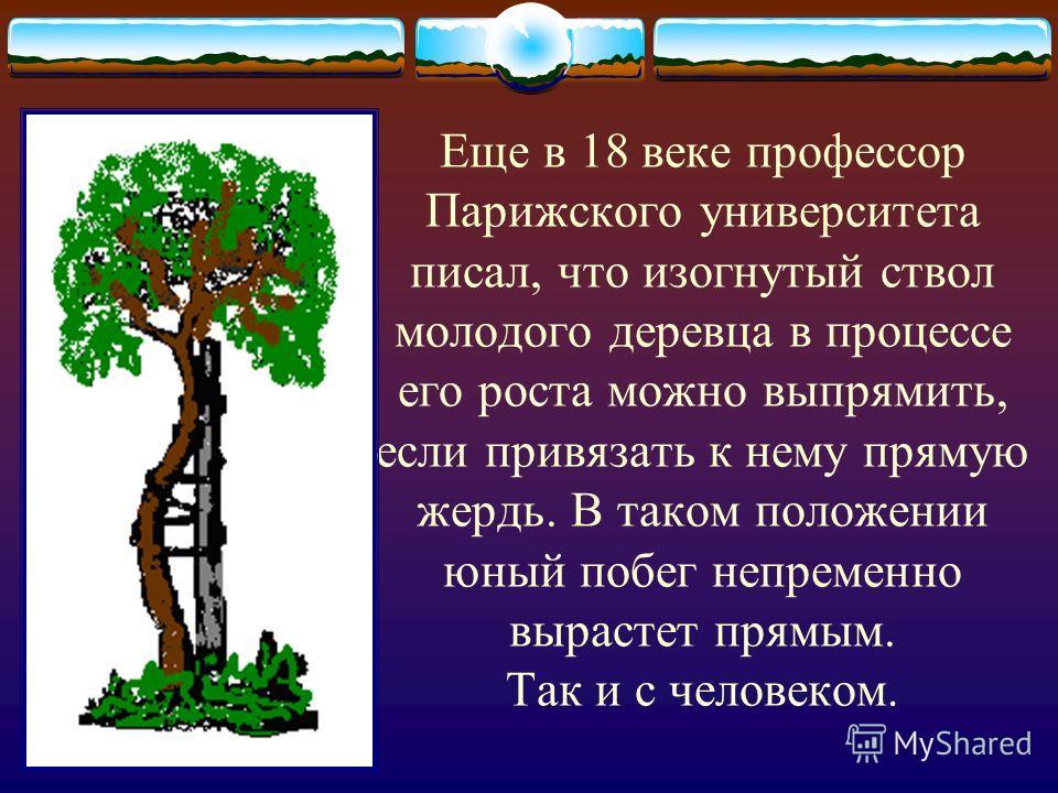 Еще в 18 веке профессор Парижского университета писал, что изогнутый ствол молодого деревца в процессе его роста можно выпрямить, если привязать к нему прямую жердь. В таком положении юный побег непременно вырастет прямым. Так и с человеком.