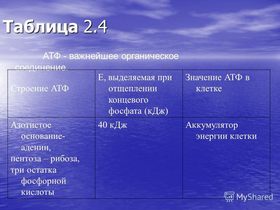 Таблица 2.4 АТФ - важнейшее органическое соединение. Строение АТФ Е, выделяемая при отщеплении концевого фосфата (кДж) Значение АТФ в клетке Азотистое основание- аденин, пентоза – рибоза, три остатка фосфорной кислоты 40 кДжАккумулятор энергии клетки