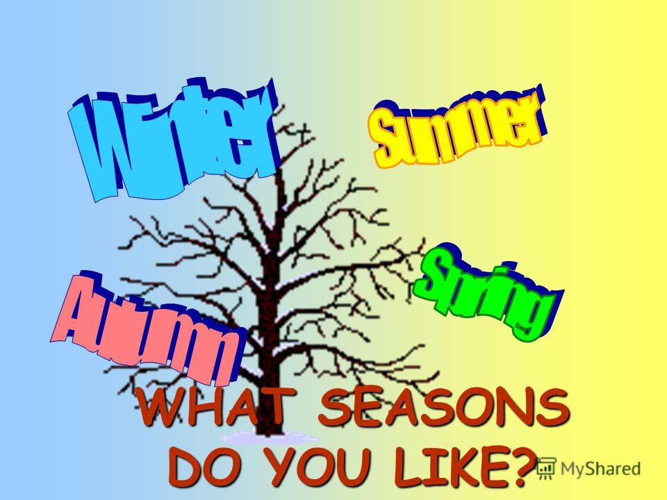 WHAT SEASONS DO YOU LIKE?