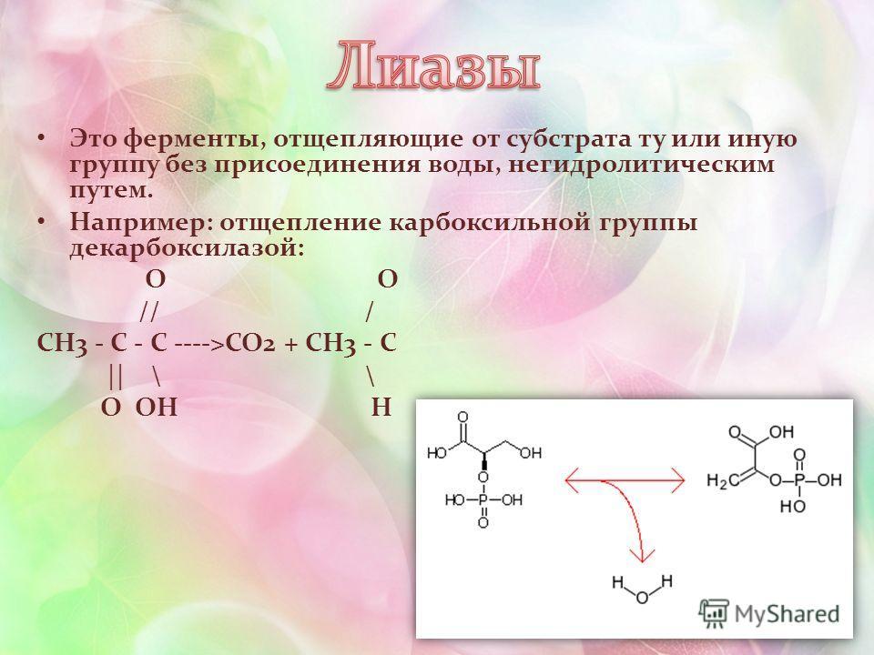 Это ферменты, отщепляющие от субстрата ту или иную группу без присоединения воды, негидролитическим путем. Например: отщепление карбоксильной группы декарбоксилазой: O O // / CH3 - C - C ---->CO2 + CH3 - C || \ \ O OH H
