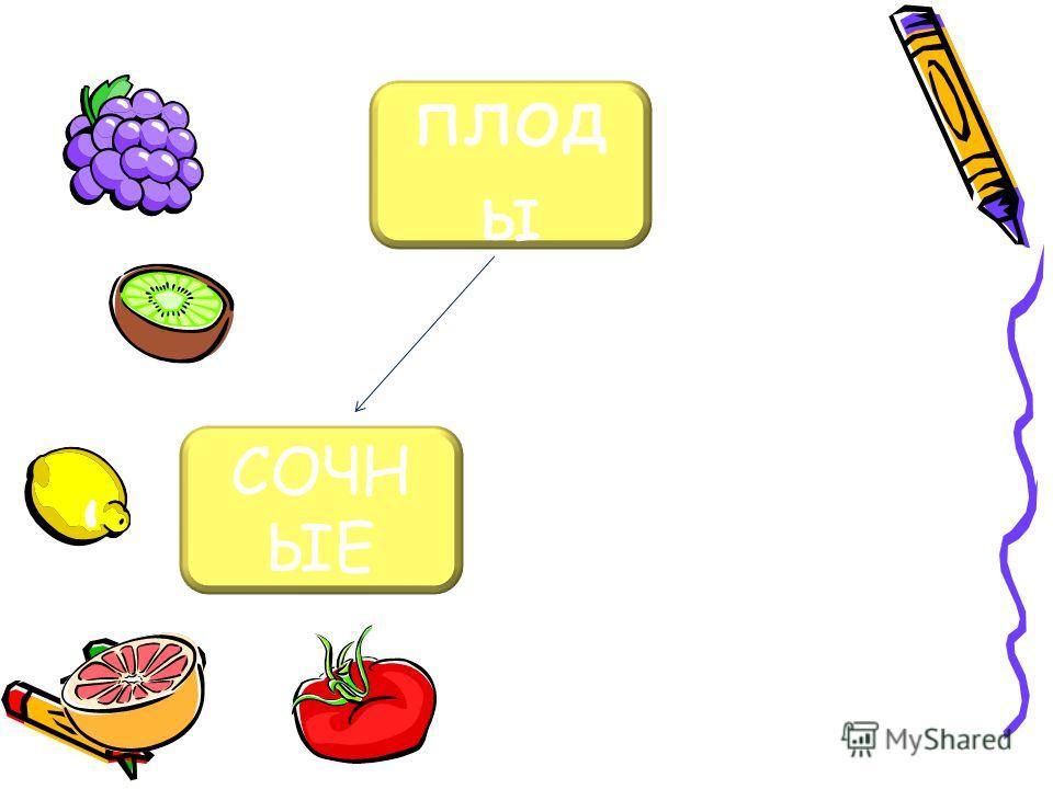 плод ы СОЧН ЫЕ