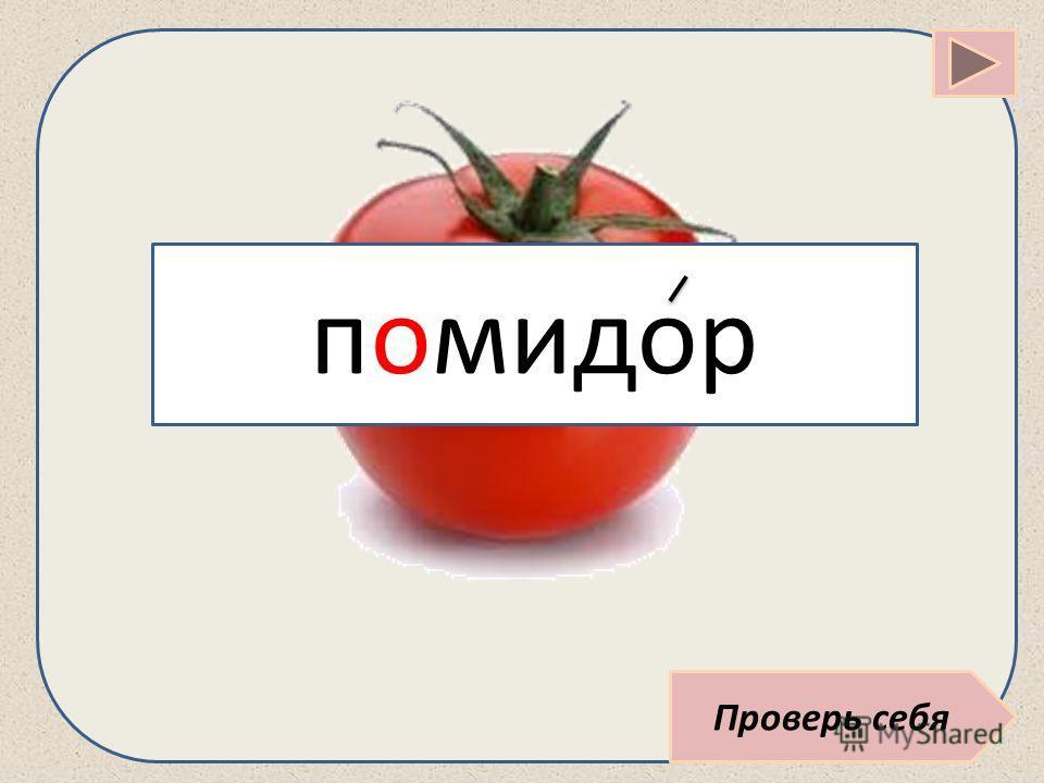 Проверь себя помидор