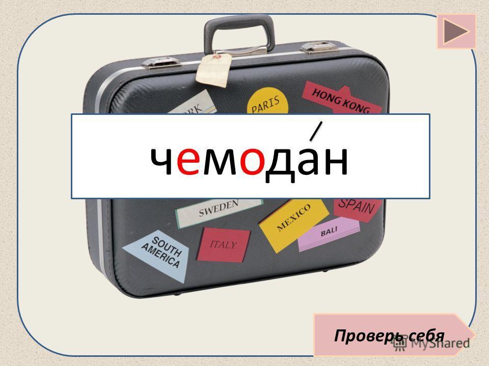 Проверь себя чемодан