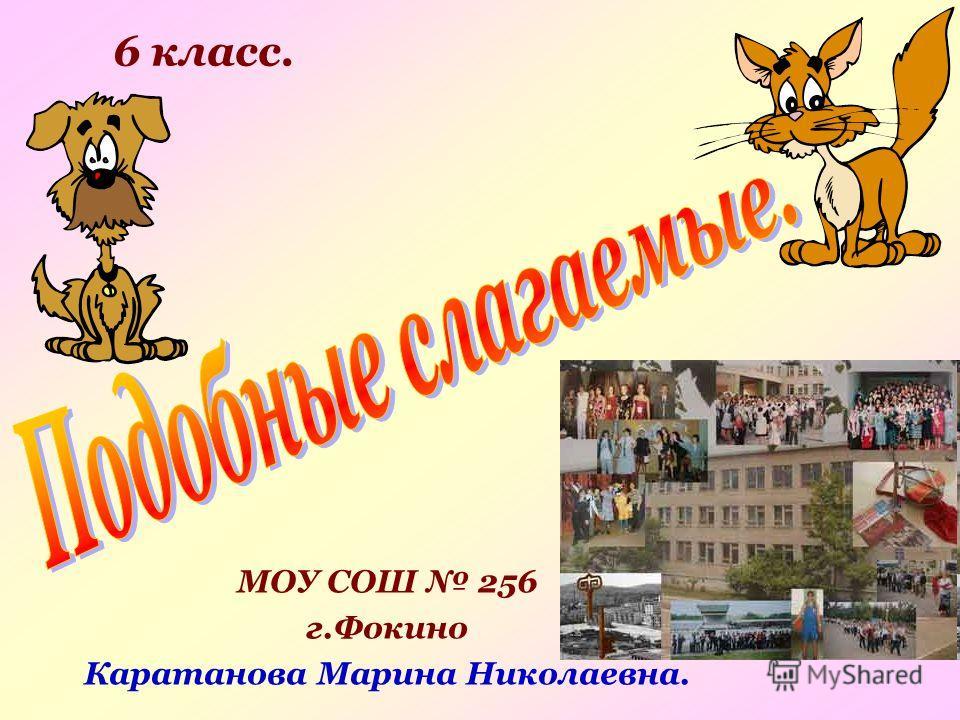 МОУ СОШ 256 г.Фокино Каратанова Марина Николаевна. 6 класс.