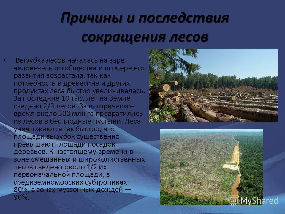 Причины и последствия сокращения лесов Вырубка лесов началась на заре человеческого общества и по мере его развития возрастала, так как потребность в древесине и других продуктах леса быстро увеличивалась. За последние 10 тыс. лет на Земле сведено 2/