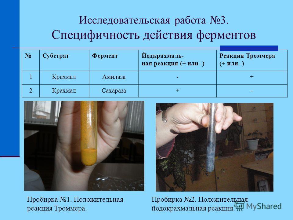 Исследовательская работа 3. Специфичность действия ферментов СубстратФерментЙодкрахмаль- ная реакция (+ или -) Реакция Троммера (+ или -) 1КрахмалАмилаза-+ 2КрахмалСахараза+- Пробирка 1. Положительная реакция Троммера. Пробирка 2. Положительная йодок