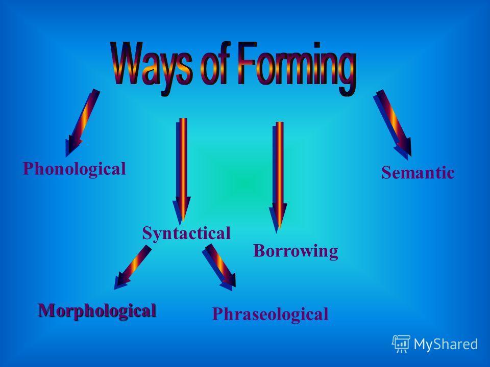 Phonological Syntactical Borrowing Semantic Morphological Phraseological